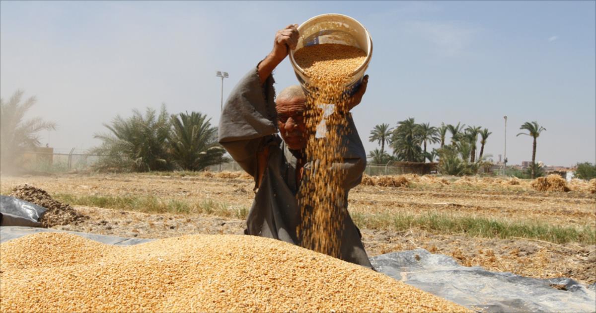 نضالات المزارعين ضد هيمنة الشركات متعددة الجنسية