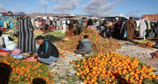 الوضع الزراعي في المغرب
